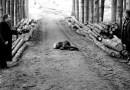 Dialogo sull'eutanasia al cinema Europa il 6 ottobre: film e dibattito filosofico