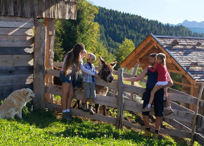 In vacanza in Trentino con tutta la famiglia