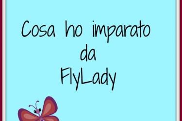 cosa-ho-imparato-da-flylady
