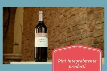 eurospin vini integralmente prodotti 4