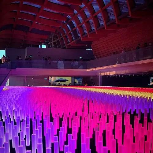 china expo milan foto