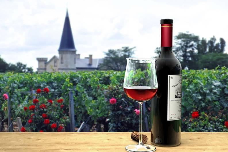 Impara il francese con i vini quali scegliere a Bordeaux  Il Caff Quotidiano