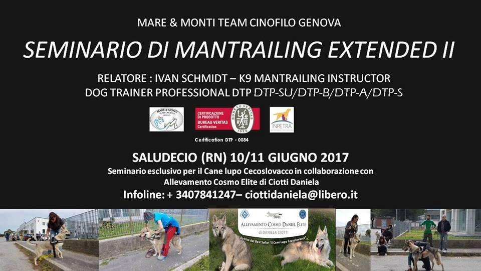 10-11 GIUGNO 2017 Corso di Mantrailing Extended II