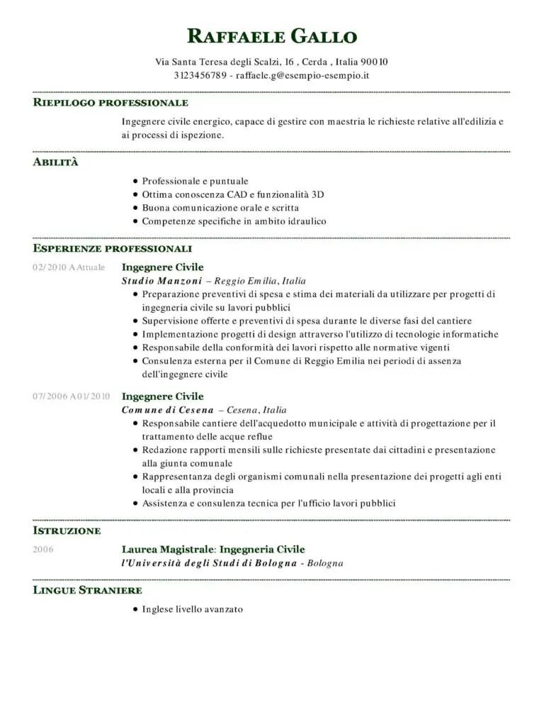 Esempio Di Curriculum Vitae Professionale Il Cv Perfetto