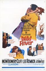 Le Fleuve sauvage (Wild River – Elia Kazan, 1960)