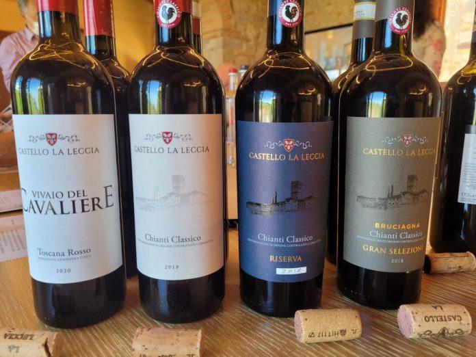 vini chianti classico castello la leccia