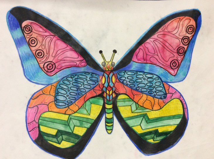 Ilfracombe Museum Butterfly Design Competition (9)