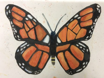 Ilfracombe Museum Butterfly Design Competition