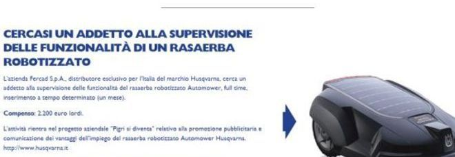Azienda offre uno stipendio da 2200 euro per stare in giardino a guardare il tosaerba
