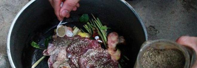 Uccide e cucina al barbecue il gatto del vicino Non