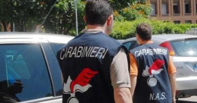 Carabinieri Nas sequestro stigghiole