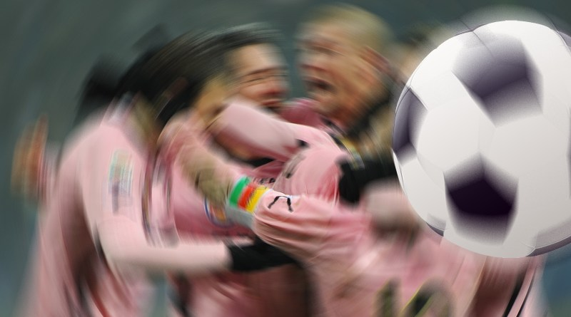 Palermo calcio esulta