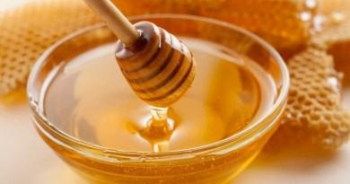 il miele contro i superbatteri