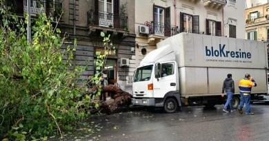 Disagi a causa del maltempo a Palermo: albero cade in via Goethe. Al liceo Garibaldi scatta l'allarme antincendio: scuola evacuata