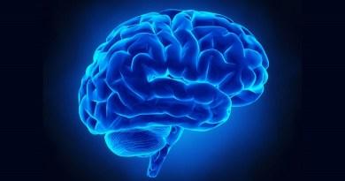 Un musicista professionista è stato operato di tumore al cervello da sveglio, mentre suonava il clarinetto. Si tratta del primo caso in Italia