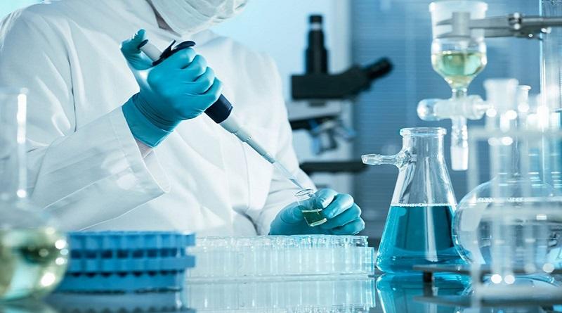 Creata la prima pelle sintetica completa di follicoli piliferi