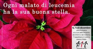Stella di Natale contro la leucemia