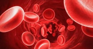 Nano-navette all'interno del sangue per combattere i tumori