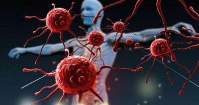 Scoperta la fonte di energia dei tumori