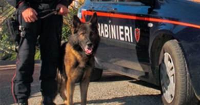 Mafia, blitz nell'Agrigentino: sette arresti