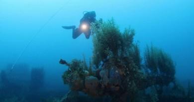 Relitto nave nel Canale di Sicilia, concluse le operazioni di monitoraggio