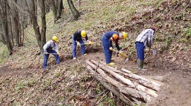 """Forestali, i sindacati: """"Primi risultati della mobilitazione"""". Prossima settimana incontro con Musumeci"""