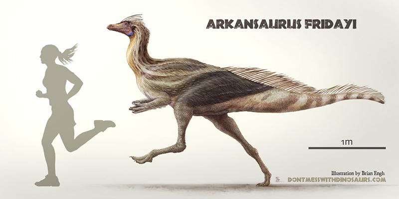 L'Arkansaurus fridayi, il nuovo dinosauro piumato
