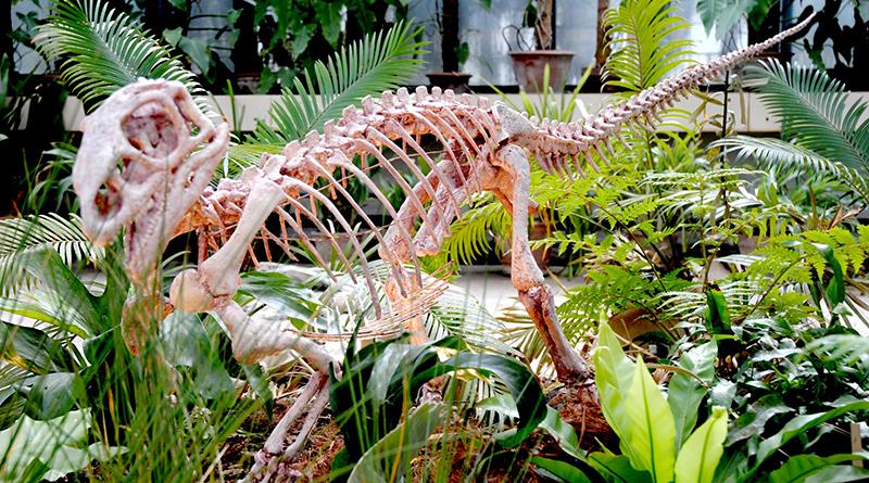 tecodontosauro