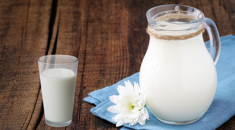 """Uno studio: """"Il latte di scarafaggio è più nutriente di quello di mucca"""""""