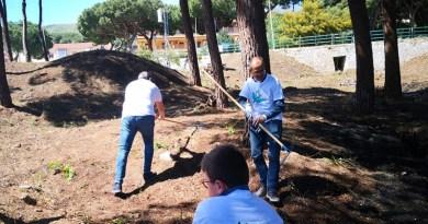 Volontari Fai Cisl al lavoro in un bosco a Cefalù