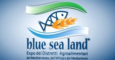 logo Blue Sea Land