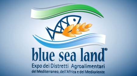 logo Blue Sea Land