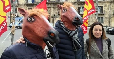 """""""Testa di cavallo"""", protesta Usb Formazione Professionale alla Presidenza della Regione Sicilia"""
