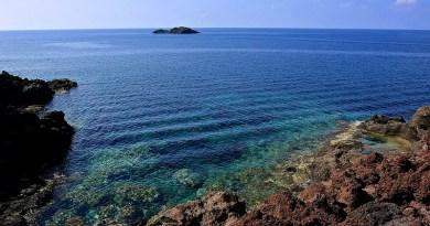 Ustica: bene il turismo nel trimestre estivo, Area Marina Protetta ottimo attrattore