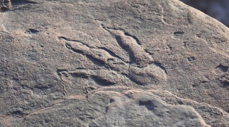 L'impronta ritrovata in Galles