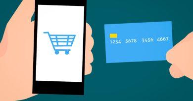 L'accesso al credito delle imprese. La valutazione del merito creditizio.