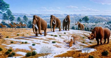 Fauna europea nell'Era Glaciale
