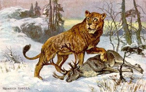 Panthera leo spelea