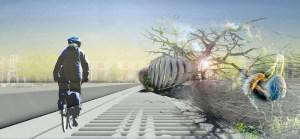 INFRASTRUTTURA CICLOPEDONALE. Attraversare in bicicletta un canale utilizzando un ponte che depura l'acqua e crea un ambiente accogliente per le specie aviarie: il progetto di Margot Krasojevic trae ispirazione dalla profonda vicinanza fra uomo e natura tipica delle culture nord-europee.(foto Margot Krasojevic)