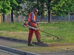 sfalcio d'erba