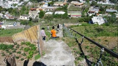 """Photo of Stop all'attività di ristorazione per """"Il Giardino Mediterraneo"""""""
