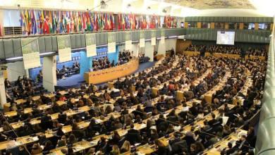 Photo of Allievi del 'C. Mennella', ambasciatori per le Nazioni Unite
