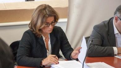 Photo of Free Market, le doglianze della Di Scala al giornalista