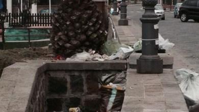 Photo of Lacco Ameno affoga nei rifiuti