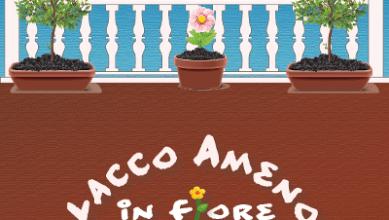 Photo of Con Lacco Ameno in fiore sboccia la primavera sull'isola