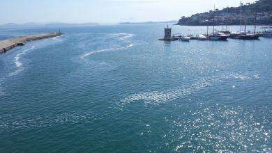 Photo of Paura per la qualità delle acque tra Ischia e Pozzuoli