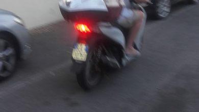 Photo of Ischia, abbandona quattro gatti e fugge sullo scooter