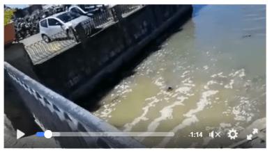 Photo of Scarichi a mare, urge un nuovo sistema di depurazione per Ischia