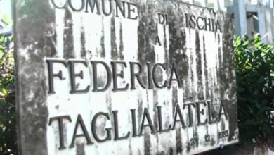 """Photo of Il Palazzetto e quel continuo """"oltraggio"""" alla memoria di Federica"""