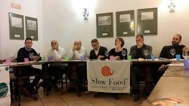 Photo of Dalla cultura del formaggio a quella dell'olio, continuano i laboratori promossi da Slow Food